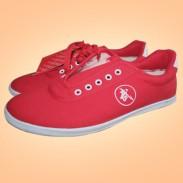 双星正品 帆布鞋 武术鞋 太极鞋-红色武字
